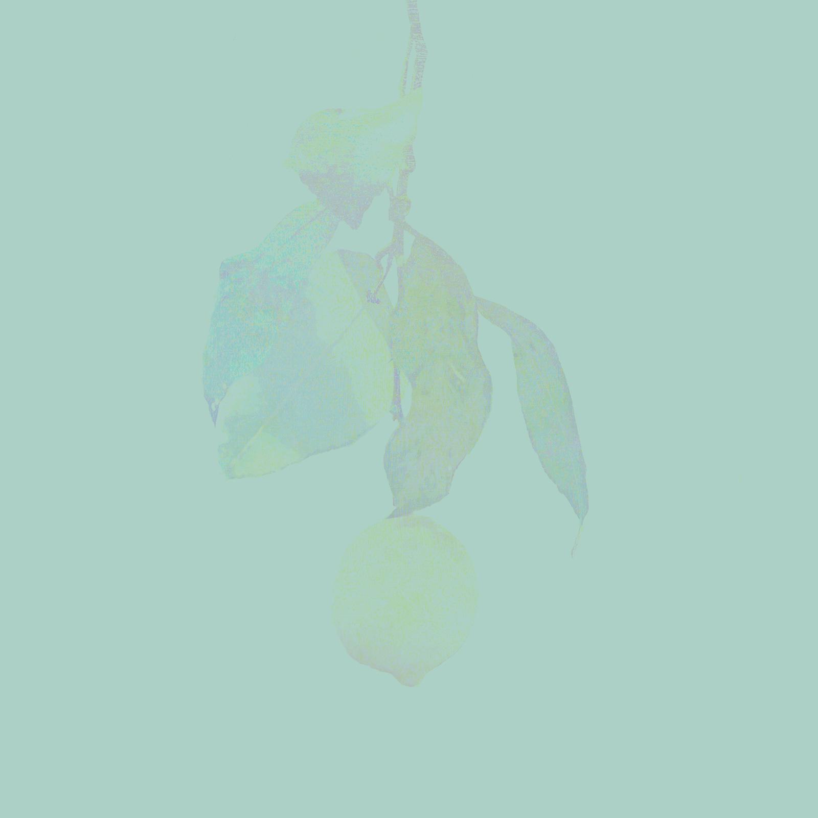 Lemon | 米津玄師 official site...