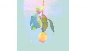 Lemon_disco